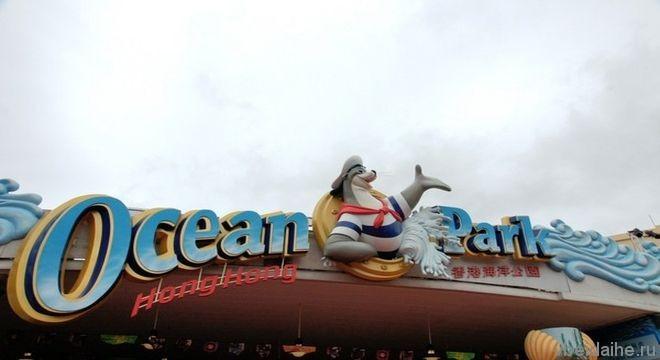 Новый аквапарк и дельфин-шоу