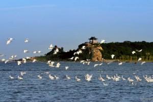 Парк развлечений «Гнездо голубки»