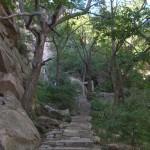 Каменные ступени, ведущие к беседкам
