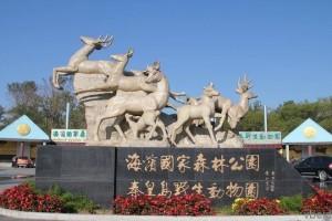 Зоопарк «Сафари» для детей и взрослых